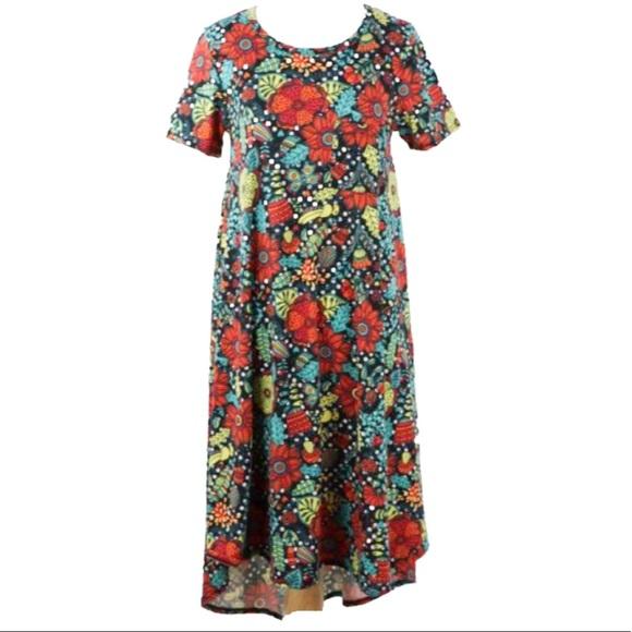 LuLaRoe Dresses & Skirts - 🔴LAST CALL🔴 LuLaRoe Dot Floral Print Carly Dress